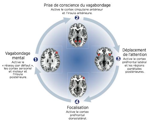 Méditation de pleine conscience pour gérer son stress et ses émotions
